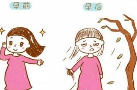 不少女性都有头发掉落的困惑,是什么原因导致的呢?怎么解决呢?