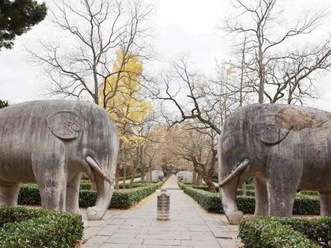 这条小道仅600米长,被誉为南京最美秋色,游客愿花60门票来拍照