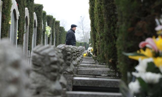 祭扫高峰到来 自贡南山公墓管理处呼吁市民在家遥祭