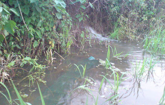 小媳妇地里除草,发现池塘中神秘地笼,拉起后惊喜的直叫