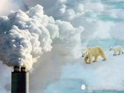 """北极熊""""无路可走""""!全球变暖致北极海冰骤减,气候变化敲响警钟"""