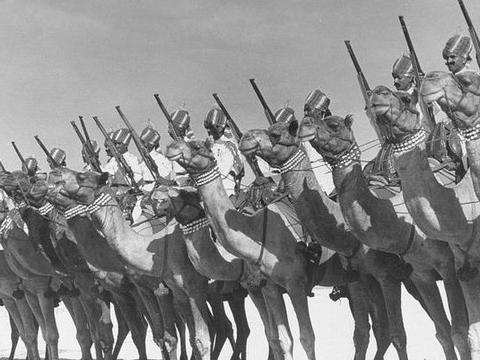 火烧圆明园的是印度军队?印度陆军打出标语:雷倒了所有国人