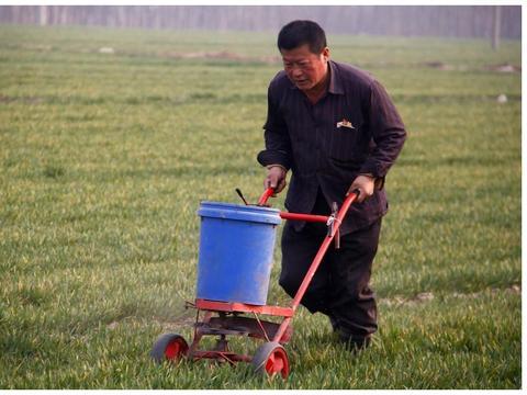 小麦不会使用除草剂?使用后效果差?四个方法教你用好除草剂
