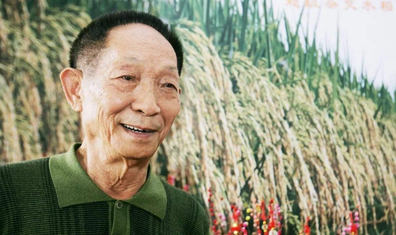 袁隆平,中国杂交水稻育种专家,福泽天下,竟不是中科院院士!