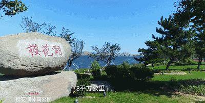 山东首批最美绿道,荣成樱花湖绿道上榜