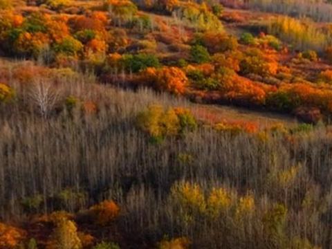 河北·丰宁,北京第一草原,这里是依赖性的美景,这里是坝上草原