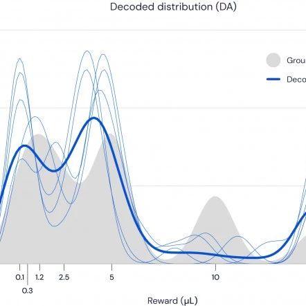 通过优化强化学习算法:DeepMind揭示了多巴胺如何帮助大脑学习方面的新细节