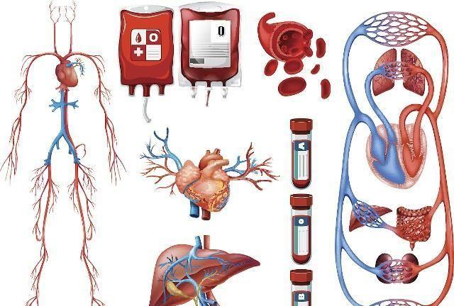 心脑血管疾病,防胜于治