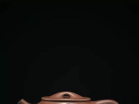 看经典学挑选紫砂壶,手把手教你挑选景舟石瓢(上)