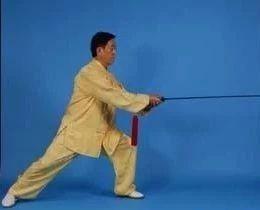 陈正雷老师陈氏太极单剑(图文)教程:第二十一式 白蛇吐信
