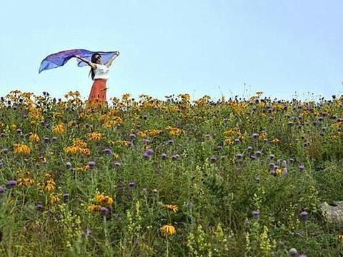 有山有水有草原的好地方,当年舜王曾在这里耕作