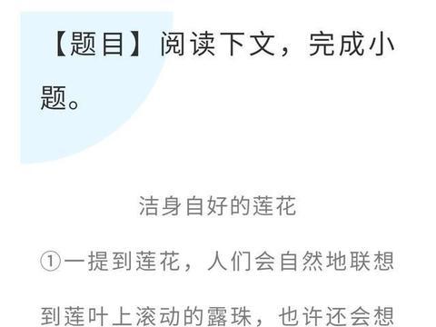 中考语文阅读理解每周一练