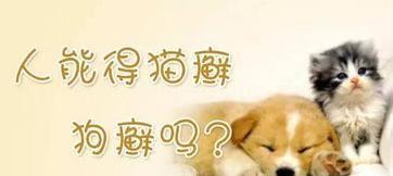 狗癣是一种皮肤病,人类也有感染的概率