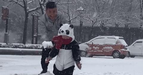 """""""最较真""""奶爸带娃,打雪仗竟不让儿子,网友:搓衣板已备好!"""