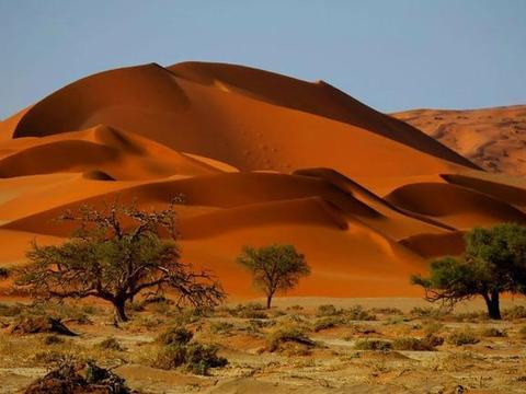 私藏在纳米比亚最美的沙漠,摄影爱好者的天堂,你去过吗?