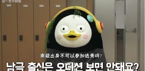 韩娱2019的年度人物....,是这只面瘫企鹅!得知原因明白了