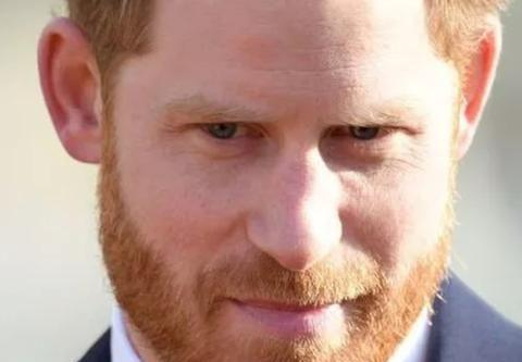 哈里难以承受王室地位带来的巨大经济压力
