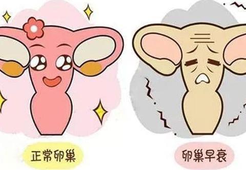卵巢功能早衰引发哪些疾病如何治疗韩国mizmedi医院论述