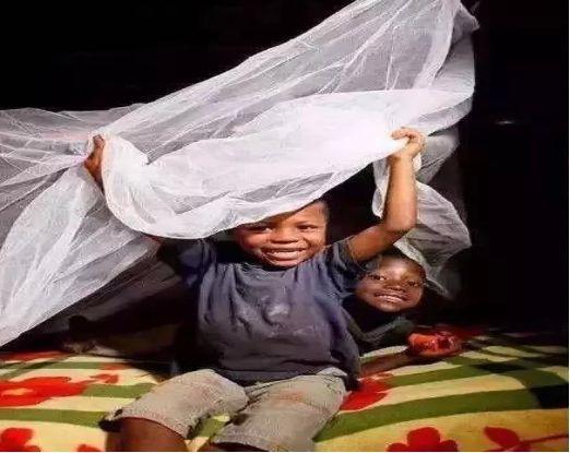 5岁女孩用蚊帐挽救百万非洲儿童,比尔盖茨都加入她的慈善队伍