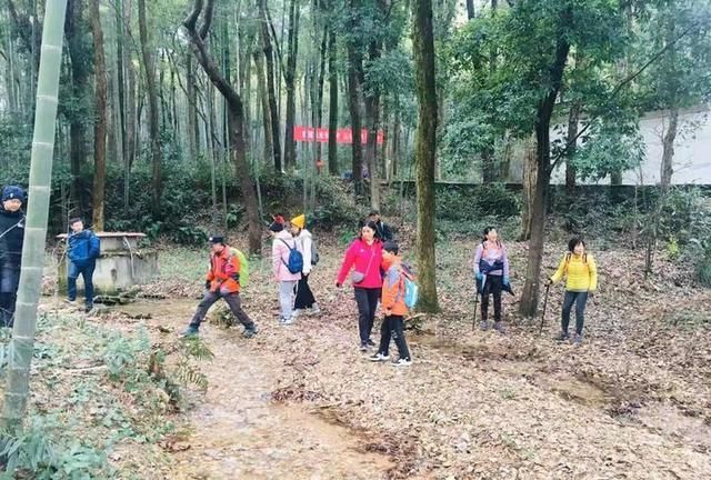 这7公里翻过5座山头,打卡杭州市中心最美的梅花~