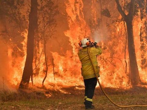 美国消防员来增援,澳大利亚大批民众鼓掌欢迎,几天后传来坏消息