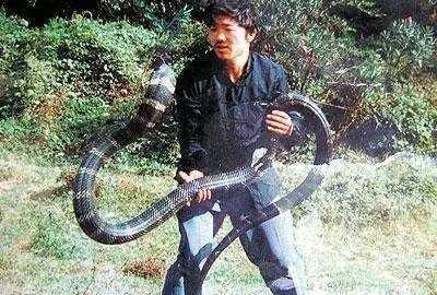 民间故事:捕蛇者