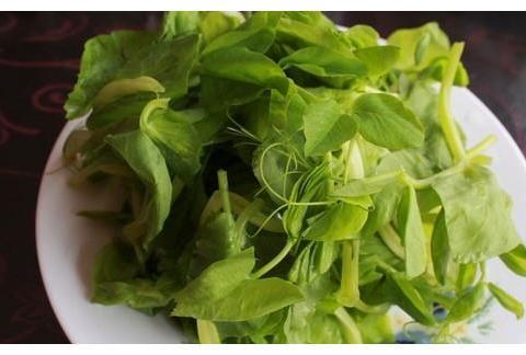 """这菜7块钱一把,天然""""泻药菜"""",下饭可口,皮肤细腻,越吃越瘦"""