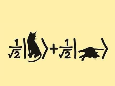 """为什么少有人做""""薛定谔的猫""""这个实验?"""