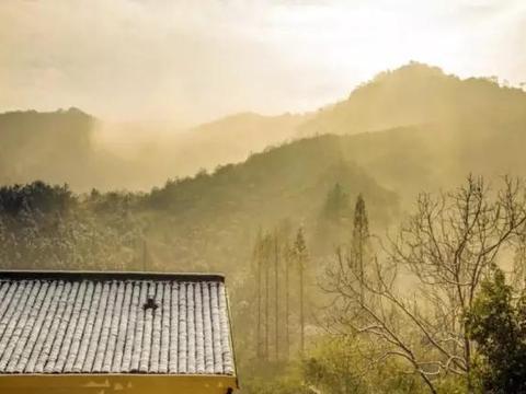 """隐居在江浙沪这网红民宿里体验高级""""佛系生活"""",随性、惬意"""
