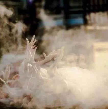 年俗 | 二十七杀年鸡!老天津为啥讲究用公鸡?
