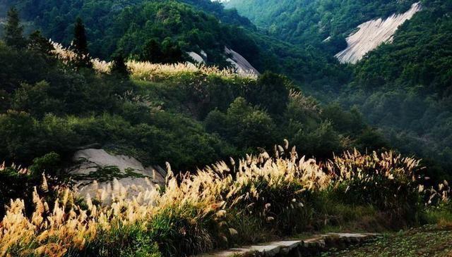 汤显祖游历安徽黄山,写下一首很唯美的诗