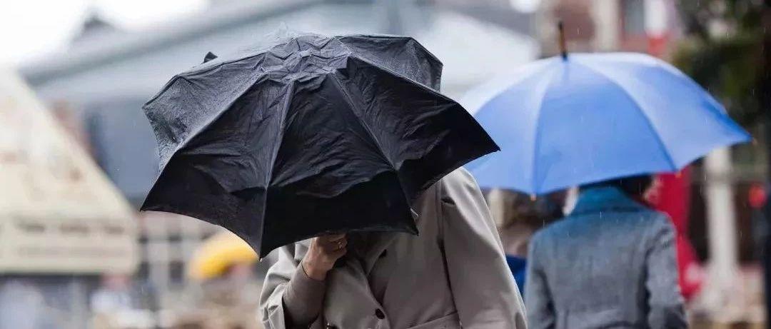 玉林春节天气预报出炉!初一开始气温下降8~10℃,还有雷雨大风