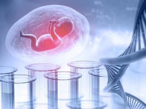 冷冻胚胎靠谱吗?