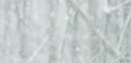 春节期间,雪打灯笼来拜年,中雪+降温,还有更刺激的