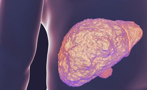 """5种食物是肝脏的""""解毒王"""",生活中常吃,疏肝排毒、肝脏更健康"""