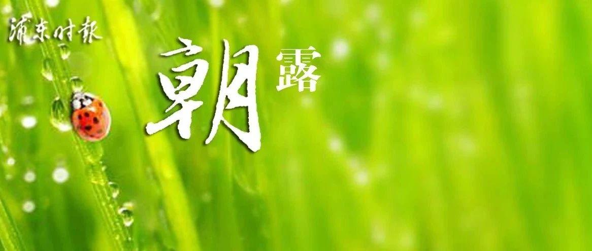 """今日除夕,""""跨年雨""""来滋扰!上海加强入市境公路收费站检查,停运湖北方向客班!初四出现春运返程高峰!七部大片退出春节档!"""