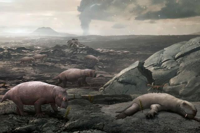 """它是自然界的""""平头哥"""",本已灭绝,如今却重现云南"""