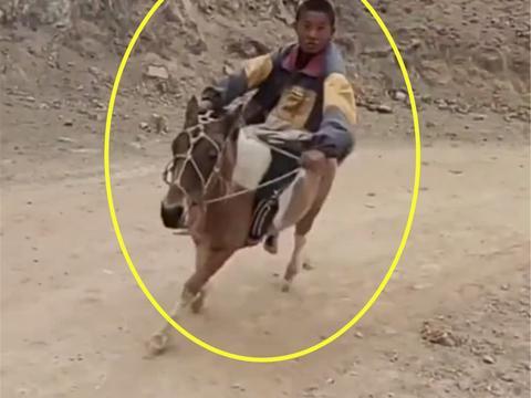 男孩在路上骑马,看到接下来的画面,网友直呼太有范了