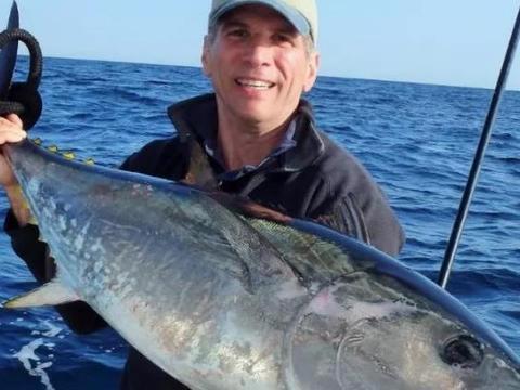 巨大的金枪鱼,是如何被做成罐头的,30秒带你看完生产过程
