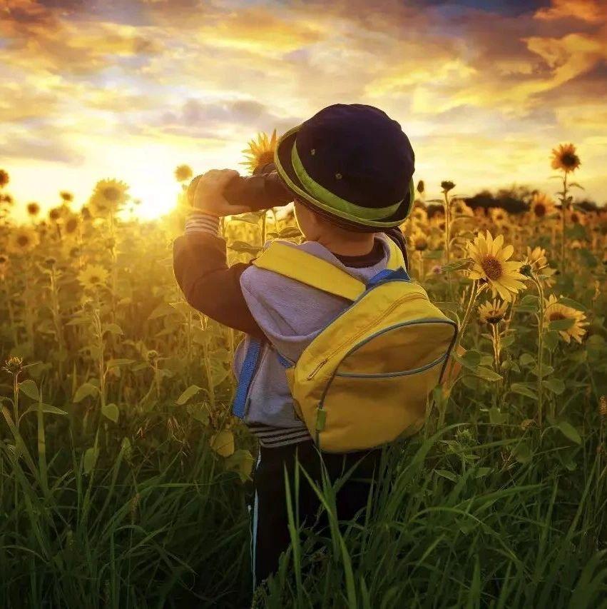 比勤奋更能决定人生的,是成长型思维