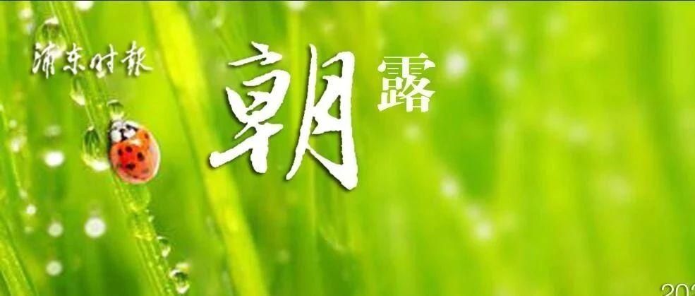 今日春节,降水可达中到大雨!上海启动重大突发公共卫生事件一级响应机制!上海迪士尼乐园等一批公共文体场所暂停开放!