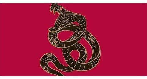 大金蛇:1月24日起总是不断进步,并且他们总是能遇到一些很横财