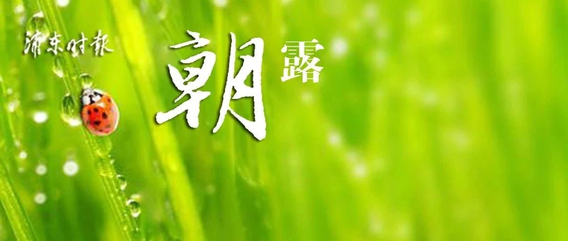 雨天将延续到年初三!沪136人援鄂医疗队昨凌晨抵达武汉!长三角铁路部分车次停运!上海姑娘三度加冕国象世界棋后!