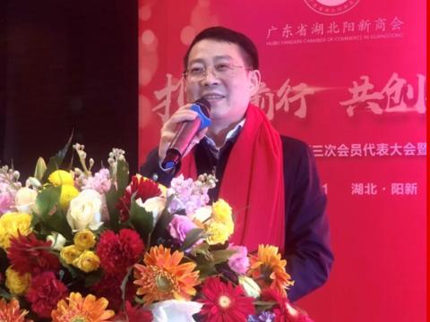 广东省湖北阳新商会第三届第三次会员代表大会暨2020迎春晚会举行