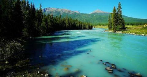 """你了解新疆吗?新疆的喀纳斯湖,被誉为""""人间仙境、神的花园"""""""