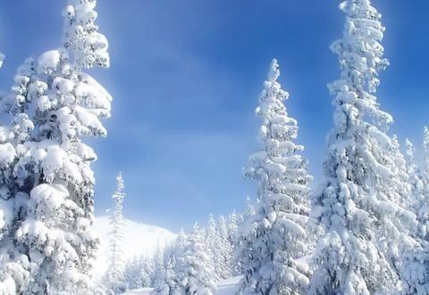 莱克加湿器,助您既享冬季美景又感春季水润