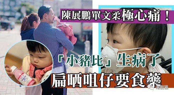 【阴公猪】「小猪比」不敌细菌染病 陈展鹏单文柔超心痛