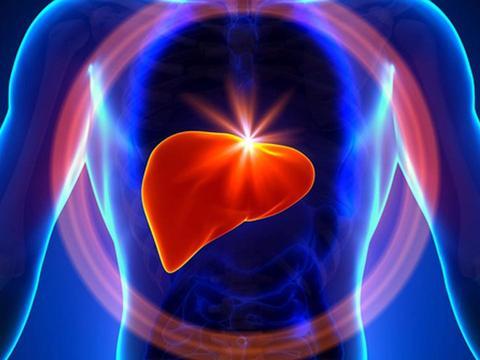 养肝就是养命!吃这6种食物,或助你将肝脏毒素全部排走!