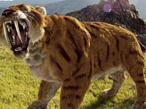 史前巨兽回归?已灭绝的动物再次出现,这代表着什么?