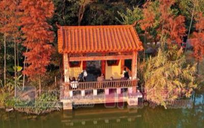 """广西也有""""杭州西湖"""",景色美游人少,低调且不收门票"""